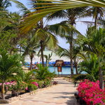 Eden Village Watamu Beachの写真