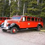 By taking a Red Bus Tour, you are also helping the environment as they run on Propane which run