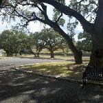 front yard of the Texas White House