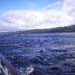  Loch Ness, your first destination from here