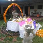  Lovely public Dia de los Muertos altar in the gardens
