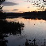 Autumn Evening at The Tranquil Otter
