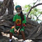 Viking's Rasta Retreats의 사진