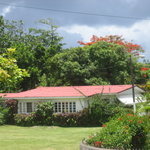 Photo of Search-Me-Heart Port Antonio