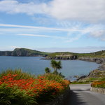 Sandycove House B&B