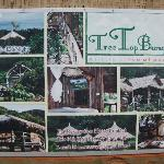 Tree Top Bungalows Kep 1
