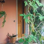 B&B La Colombara. Pozzolengo. (Bs). Lake Garda. Private entrance for our guests under the shed f