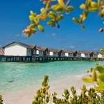 ‪Reethi Beach Resort‬