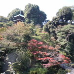 Chinzanso Garden