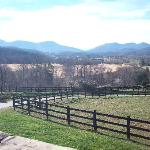 Foto di Brasstown Valley Resort & Spa