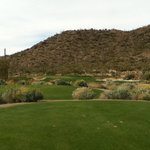 Ritz Carlton Golf Course Dove Mountain