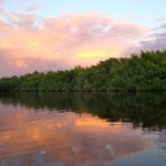 Foto di Everglades Rentals & Eco Adventures