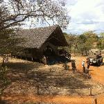 Impala Camp Reception