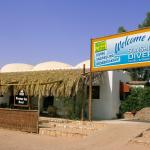 Photo of Sunshine Divers Club - Sharks Bay
