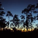 Long Pine Key Campground resmi