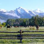 View of Teton Mountains from Ranch