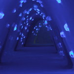the magical ice hotel