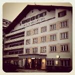  Hotel Edelweiss in Zrs