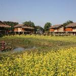 Photo de Diphlu River Lodge