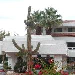 Motel 6 Palm Springs Downtown의 사진