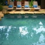 Our natural stone pool surrounded by live oak trees.