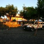 The Zebra car with the hotel in the background