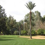Koutoubia nine - 7th green