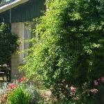 Emerald Hills Country Guesthouse