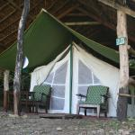Tiger Tops Tented Camp