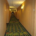 Φωτογραφία: Fairfield Inn & Suites Verona