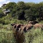 Photo of Singita Lebombo Lodge Kruger National Park