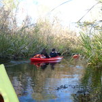 Foto de Everglades Rentals & Eco Adventures