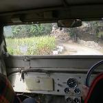 Guided jeep ride to sanctuary and villages