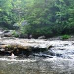 Local Swimming Hole