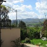  vista e giardino