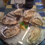 oyster natural