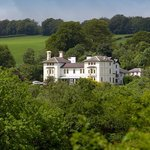 The Falcondale Hotel