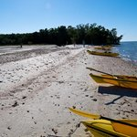 Foto de Everglades Area Tours - Day Tours