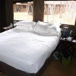 andBeyond Chobe Under Canvas의 사진