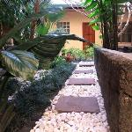 The patio garden of Cool Guest House