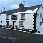 Bilde fra The Hawk & Buckle Inn