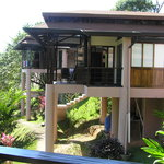 TikiVillas Rainforest Lodgeの写真