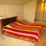 Photo of Olduvai Camp Serengeti National Park