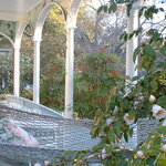 Camellia Cottage Bed & Breakfast