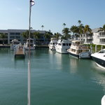 Captiva Cruises