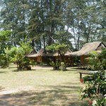 Photo of Buddha Bungalows Rayong