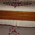  Rose petals leading us into the room