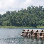 Foto van Tree Tops Jungle Safaris - Raft Houses