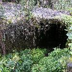  Kaumana Cave County Park, near Hilo