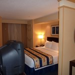 Фотография Springhill Suites by Marriott St. Petersburg/Clearwater